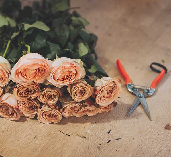 cut flower care guide how to look after flower bouquet