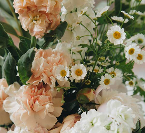care for bouquet fresh flower care guide
