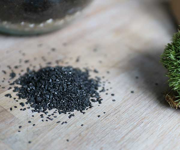 charcoal-for-terrarium-tool-kit-plant-health