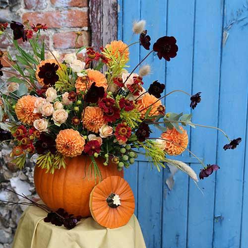 pumpkin flower workshop autumn craft norwich norfolk
