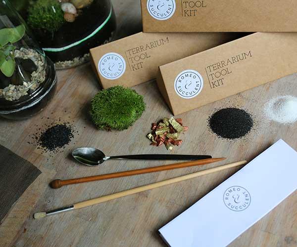 terrarium tool kit plant terrarium with moss