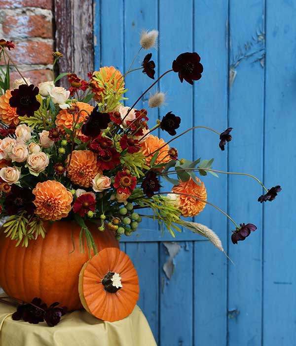 autumn halloween floral pumpkin