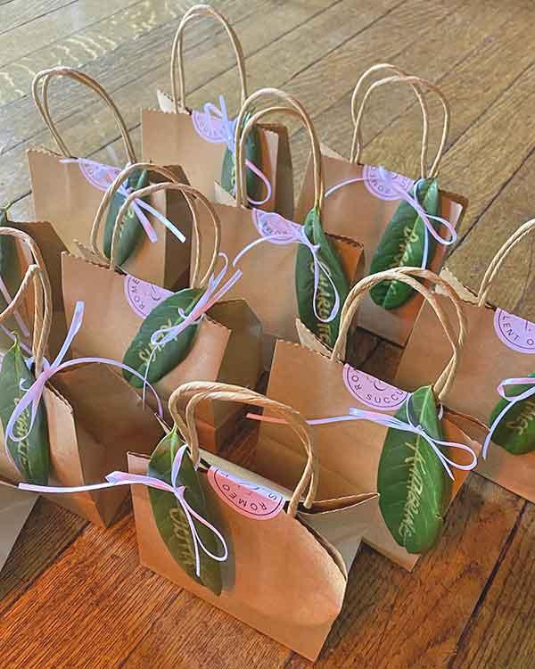 succulent wedding favours in norfolk