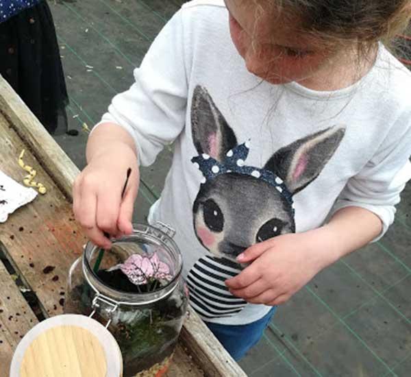 make your own terrarium craft