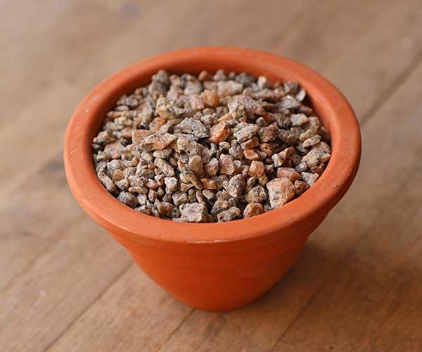 terrarium alpine grit