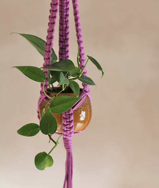 recycled macrame plant hangers